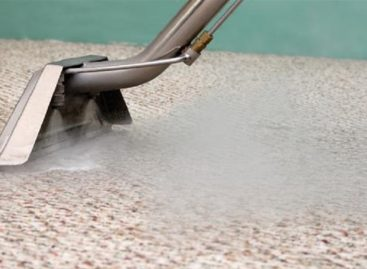 The Three Best Carpet Cleaners In The Market