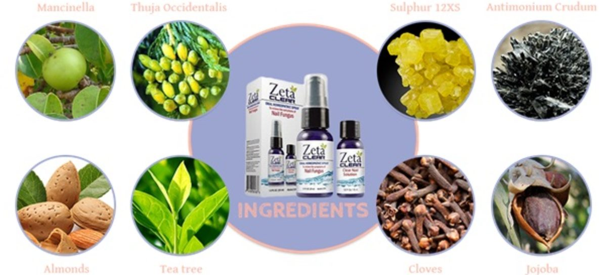 Ingredients Of Zetaclear And Their Benefits Year Tearm
